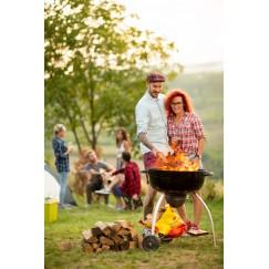 Bois spécial Barbecue en 33cm- Bois de chauffage en palette de 1st  - 0.7m3