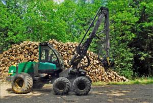 Livraison de stères de bois - bois de chauffage - Piskorski